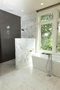 Cheap Showers For Small Bathrooms Impressive Modern Doorless Shower Designs Homedees