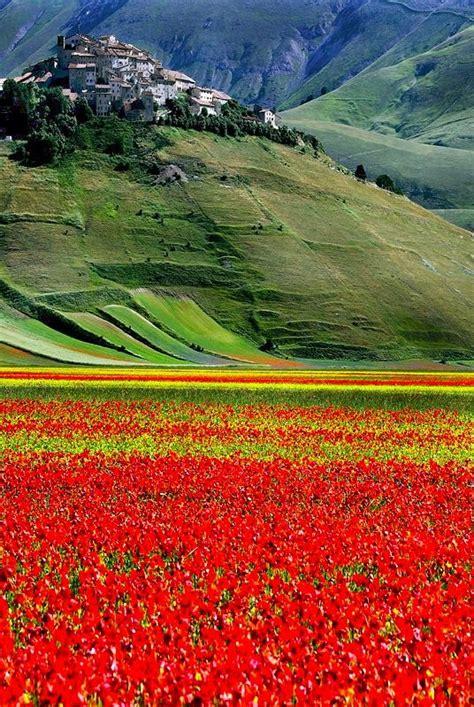 ubi perugia castelluccio umbria italy province of perugia ubi