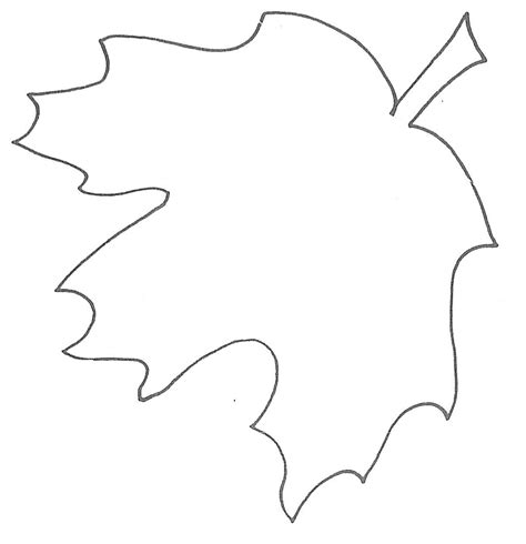 printable leaves outline maple leaf template to print clipart best