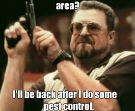 Best Way To Clean An Area Rug Celebrity Pest Control Memes