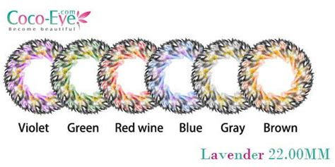 new softlens cocoeye lavender 6tone pusatsoftlens