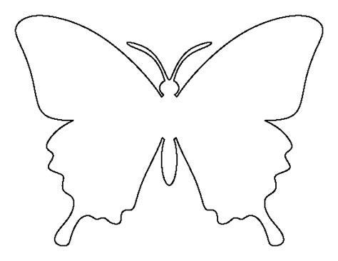 free butterfly templates butterfly outline clipartion