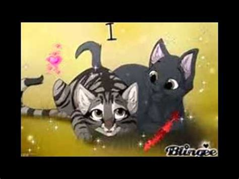 Leafpool X Crowfeather Full Warrior cat AMV - YouTube Leafpool And Crowfeather Mating