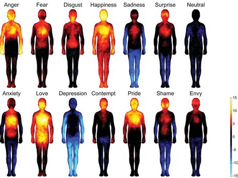 pain body emotions cause our body pain musings of the bipolar hot