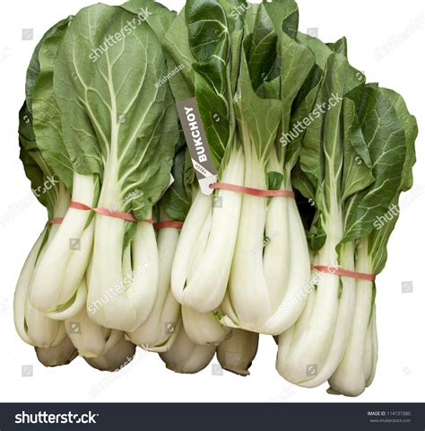 vegetables used in asian cooking bukchoy vegetable leaf vegetables used stock photo