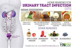 urinary tract infection home remedy home remedies for urinary tract infection uti top 10
