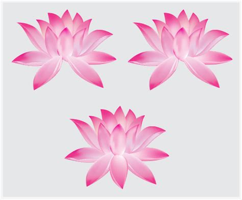 tutorial vector flower create a lotus flower with adobe illustrator cs5 tuts
