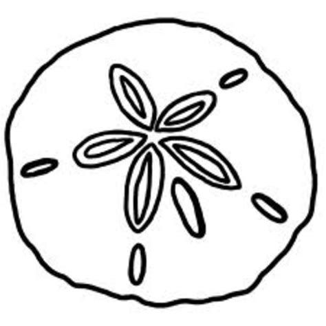 sand dollar free images at clker com vector clip art