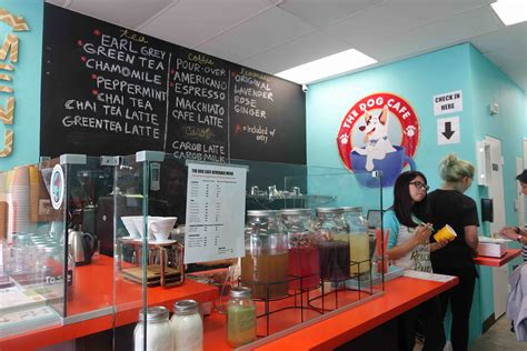 puppy cafe los angeles vegan at the cafe los angeles ca