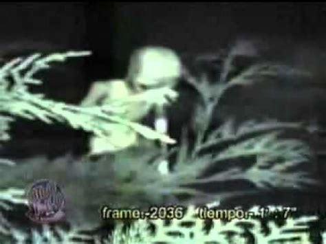 imagenes reales sobre ovnis imagenes de extraterrestres reales youtube