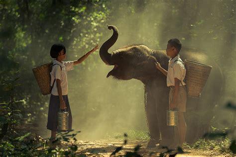 elephant weigh wonderopolis