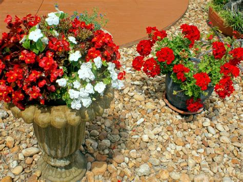 Rock Garden With Potted Plants How To Use Rocks In Your Landscape Hgtv