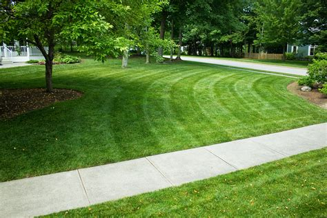 service vermont 24 lastest list of landscaping services in vermont dototday