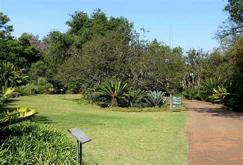 National Botanical Gardens Parking 30 Winter Picnic Spots In Pretoria Travelground