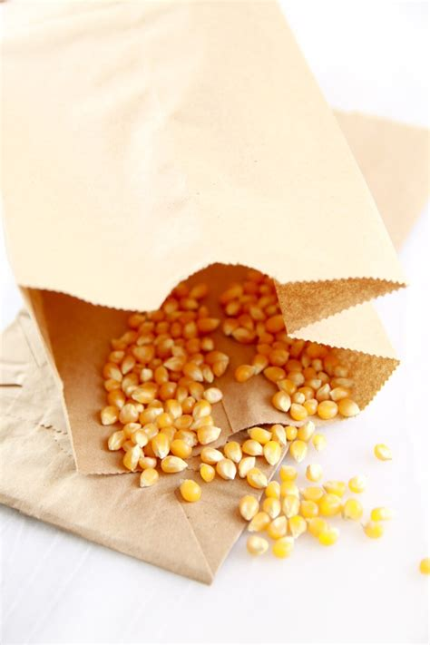 How To Make Popcorn In A Brown Paper Bag - microwave popcorn made in a brown paper bag