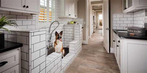 amazing dog friendly homes  interiors