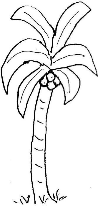 palm tree coloring page palm tree to color