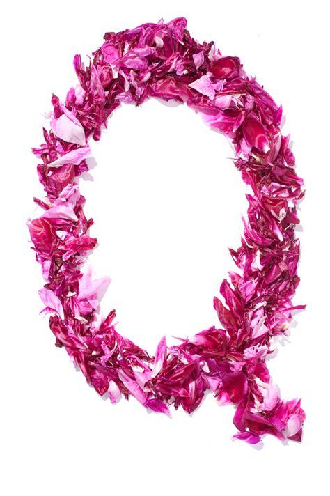 fiore con la q alfabeto fatto con fiori q fito