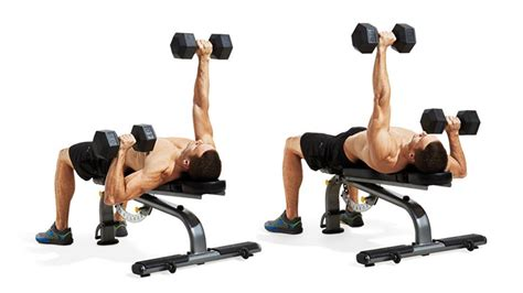 how to bench press with dumbbells dumbbell bench press workout for explosive pressing power