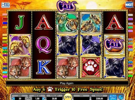 cats slot   developer igt