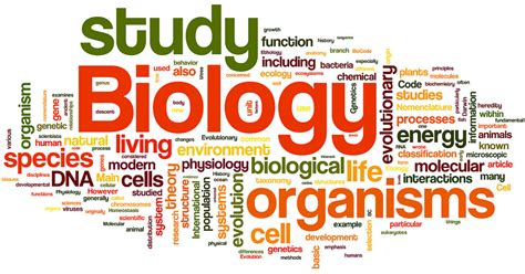 themes of biology exles 16 tell tale signs that you re a biology major