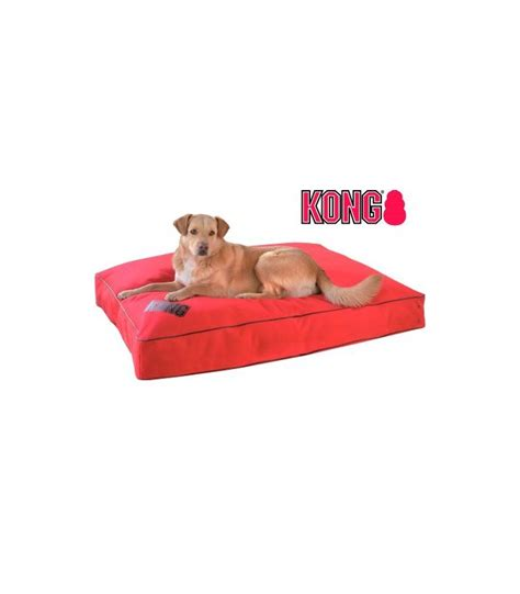 kong dog beds kong dog bed pierrevalley com