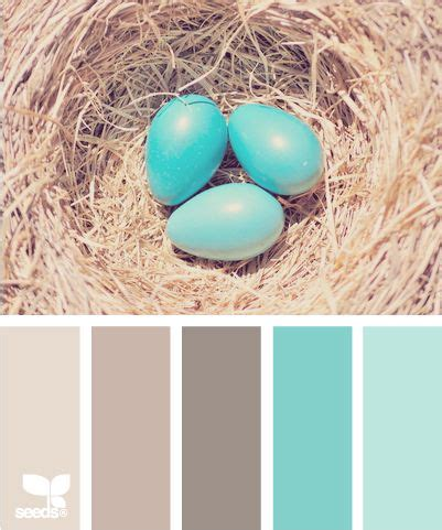 color sign design eggs and living rooms