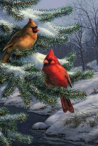 Cardinal Bird House Images