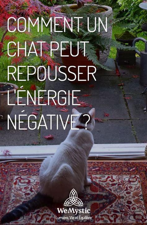 Chat Energie Negative by Comment Un Chat Peut Repousser L 233 Nergie N 233 Gative