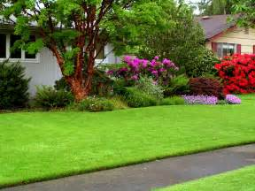 some important tips for your kitchen lawn