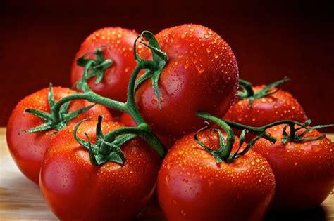 tomatos dean mccartney