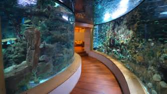 Mega Home Aquariums of the Middle East   Part 2   Reefs.com