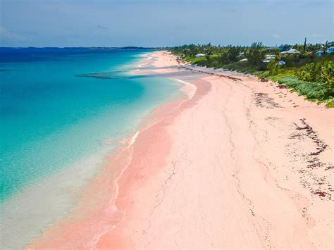 Beaches With Pink Sand | where to find pink sand beaches and black and green