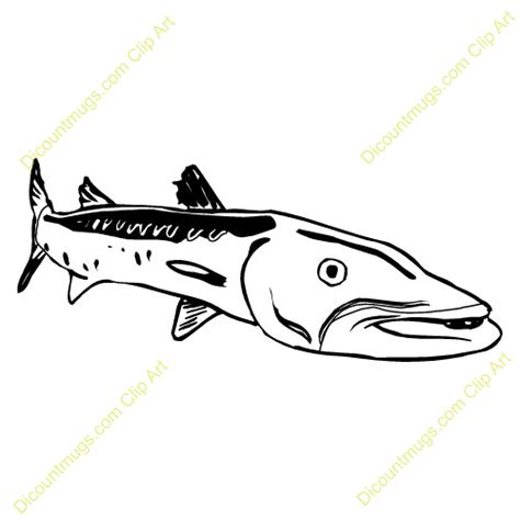 barracuda clipart free barracuda right clipart custom clip 11334