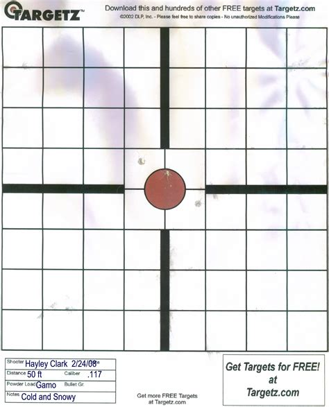 printable targets for zeroing rifle zeroing targets pictures to pin on pinterest thepinsta