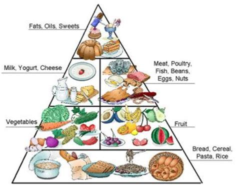 Each meal is composed of items from the exchange diet lists and each