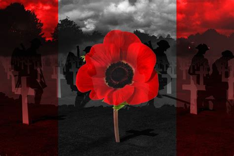 google images remembrance day canadian remembrance day pics google search we