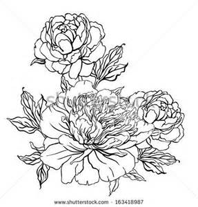 Vintage Flower Drawing - peony vintage hand drawing drawing pinterest