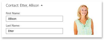 devexpress layoutgroup header expandcontainer class windows 10 app controls