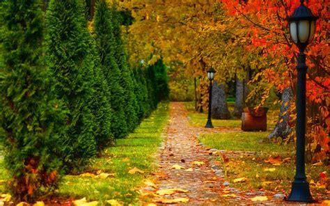 park autumn road trees lantern leaves wallpaper
