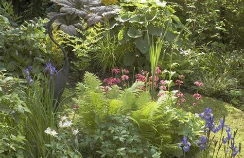 Bog garden   Wild About Gardens