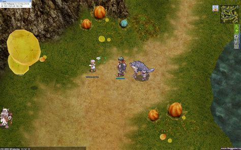 fairy quest ragnarok finding a fairy база квестов ragnarok online