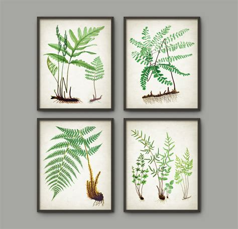 fern decor fern botanical wall art print set of 4 vintage fern