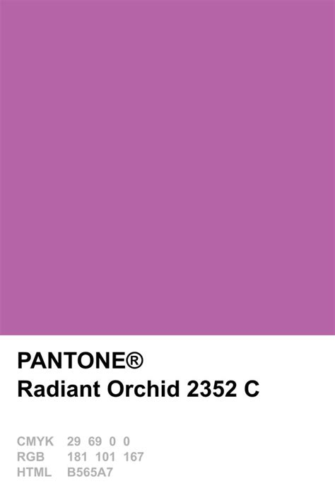 pantone color of the year hex 17 best ideas about pantone cmyk on pinterest pantone to