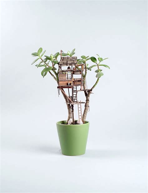 tiny potted plants miniature tree houses for houseplants are just perfect for