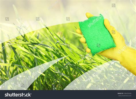 amazing of stock photo hand with sponge cleaning bathroom hand sponge cleaning dirty window stock photo 185425439