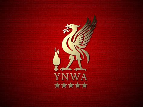 free hq ynwa wallpaper free hq wallpapers