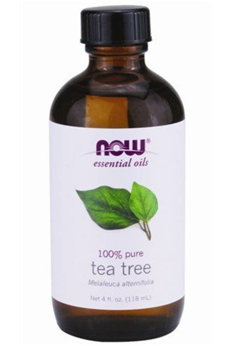 tea tree oil ingrown toenail ingrown toenail satisfactory otc yeast remedy yeast infection tips