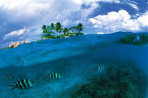 ocean completely