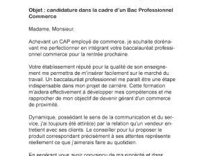 Lettre Motivation Ecole De Patisserie Lettre De Motivation Bac Pro Commerce Par Lettreutile